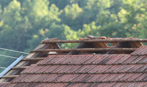 Veter razkrival strehe in podiral drevesa